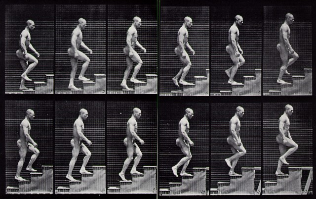 muybridge_ascending_stairs